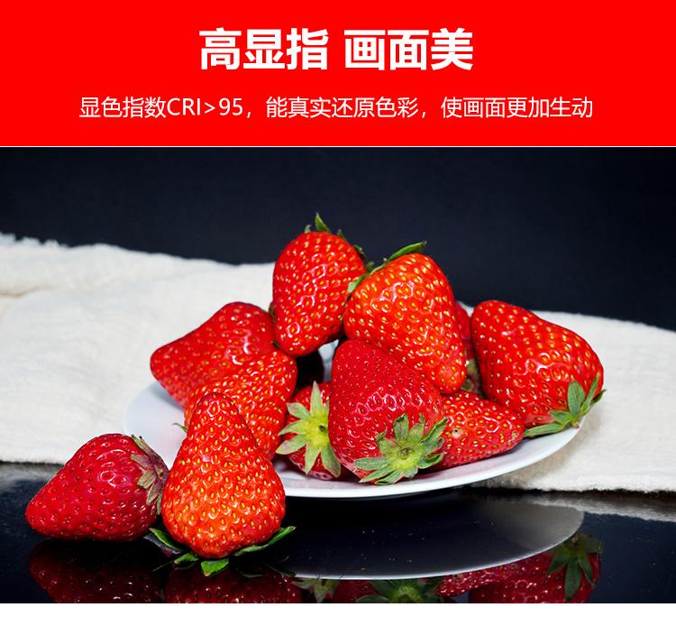 泰阳人 TYR-LED4800 数字遥控led平板柔光灯(图7)